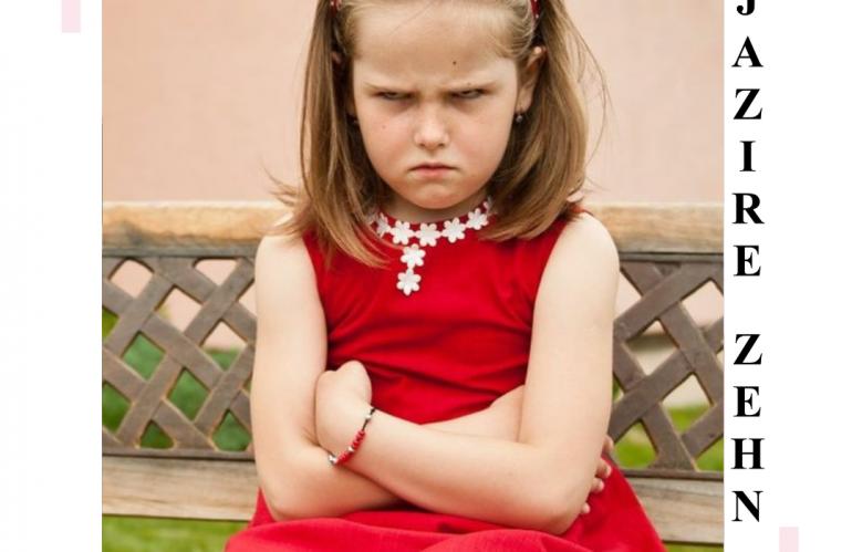 با فرزند پرخاشگر چگونه رفتار کنیم؟| مائده امین الرعایا| جزیره ذهن